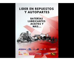 REPUESTOS Y AUTOPARTES   Chevrolet Renault